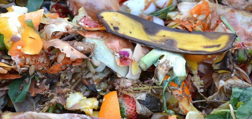 Kompostavimas viduje – kaip kompostuoti bute