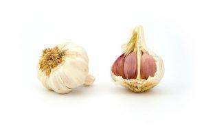 garlic-1808_640