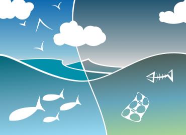 Plastikas vandenynuose – kaip sprendžiama problema?