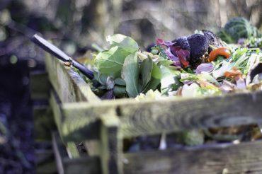 Kompostas – kas/kam/kodėl?